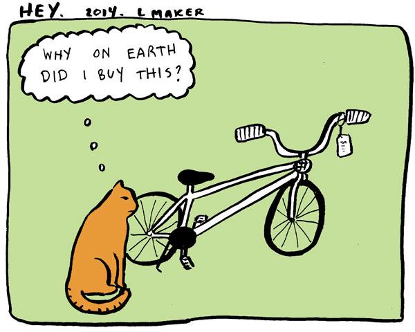 2014-06-bikecat